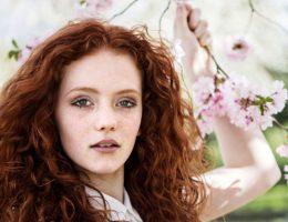 Миниатюра к статье Как покрасить волосы хной в домашних условиях?